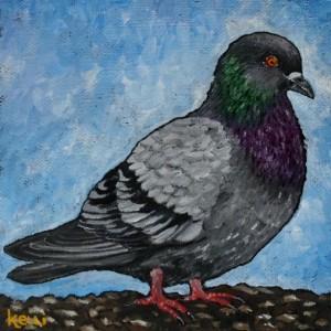 """Rock Pigeon"" original oil painting"