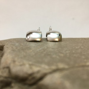 Silver Synclastic Earrings