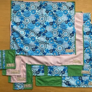 2 Setting Napkin Set - Blue/Pink/Green