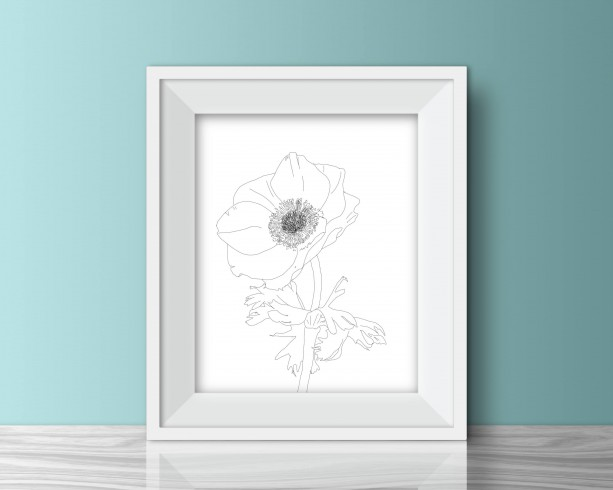 Anenome Illustration - 8x10