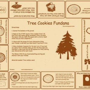 Tree Cookies Fundana