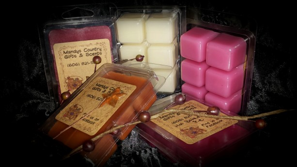 3 Scented clamshell breakaway wax candle tarts/ wax melts