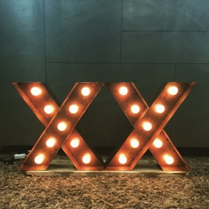 Marquee Letter Light