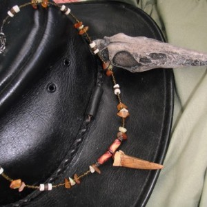 """""""From Above"""", Pterodactyl Tooth Replica Necklace"""