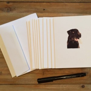 Labrador Retriever Cards with envelopes, Blank Note Cards, Stationery Set, Custom Stationery, Stationery Gift, Note Card Set, Note Cards