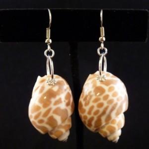 Babaloia Japonica Shell Earrings