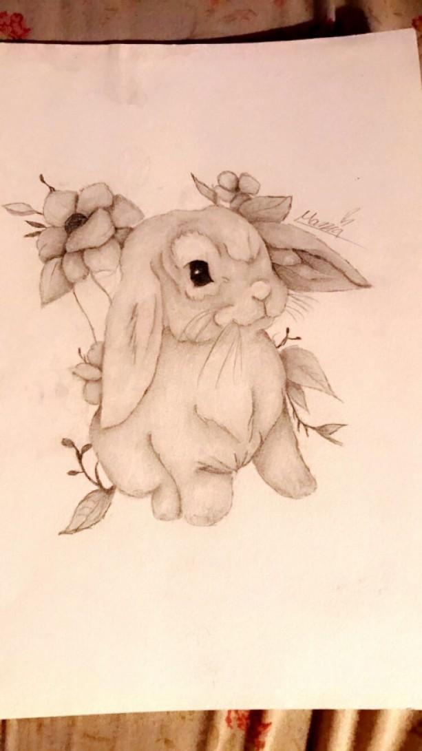 9x12 bunny illustration