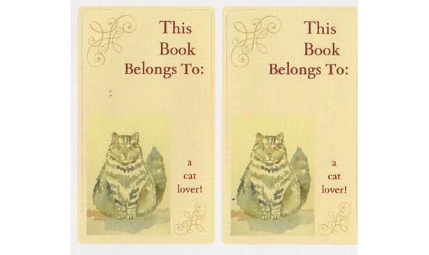 Bookplates w/ Cat Art - Set of 5 self stick bookplates -GRAY FLUFFY CAT
