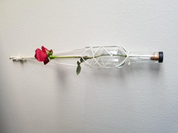 Upcycled glass bottle plant hanging