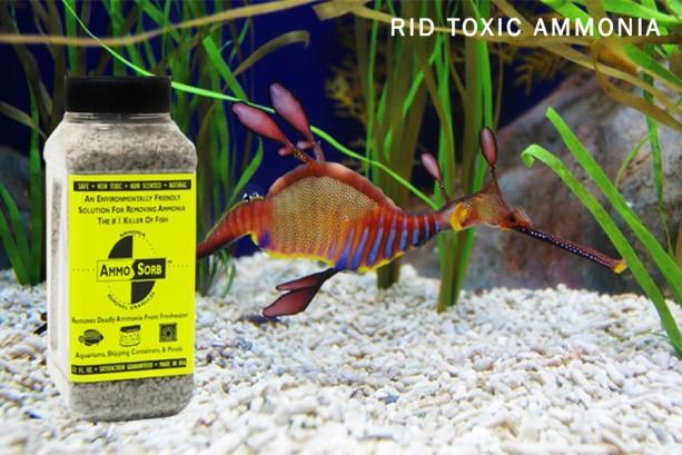 AMMOSORB Natural Aquarium Ammonia Eliminator Deco Rocks: 2 lb.