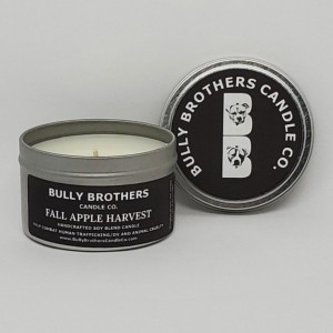 Fall Apple Harvest - Candle 6 oz tin