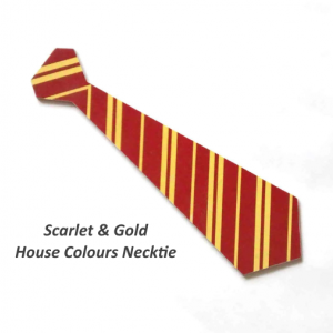 School of Witchcraft & Wizardry House Colours Necktie Set