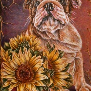 Original Drawing, Bulldog with Sunflowers pet portrait, pencil drawing, dog, animal, handmade wall art, gift, purple, brown