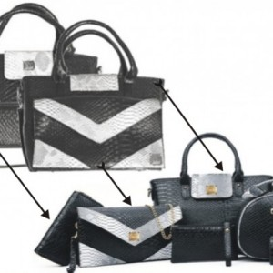 ZedVers Patents Pending Concept Used with Handbags
