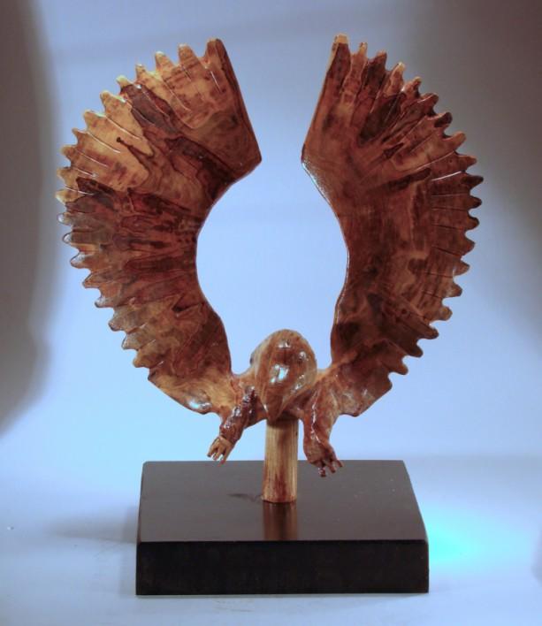 Disc Eagle