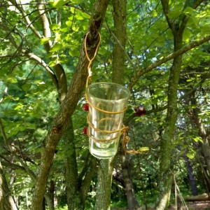 glass jelly bird feeders
