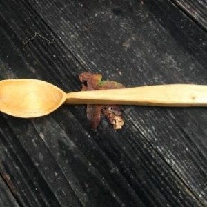 jar spoon 1a