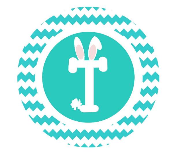 Chevron Fluffy Bunny Tail Iron On DIY Rabbit Shirt T-Shirt Basket Easter Name Shirt Fun Easter Shirt Basket Stuffer Ideas My First Easter