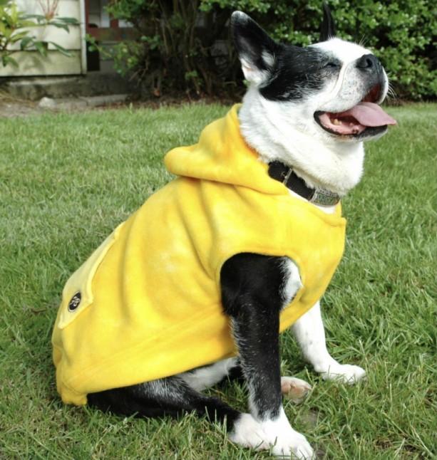 "Yellow Fleece Hoodie XXS 13-14"" girth"