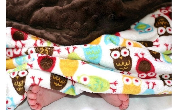 Baby Blanket - Owl Baby Blanket - Minky Baby Blanket - Baby Blanket Boy - Unisex Baby Blanket - Baby Shower Gift - Gift for Baby - Owl Baby