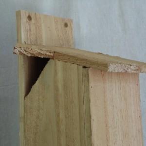 Cedar Squirrel House, Cedar Squirrel Nest Box, Large Cedar Birdhouse, Rustic Squirrel House