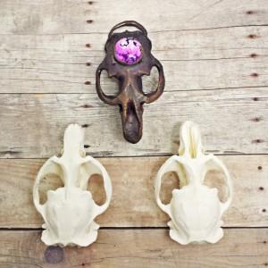 Electroformed Muskrat Skull Pendant