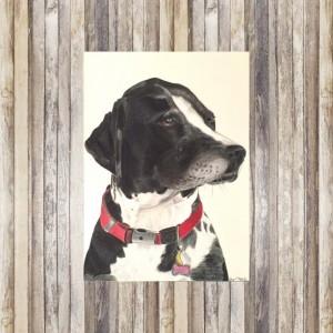 Pet Portrait (8x10), Custom Pet Portrait, Pet Portrait Custom, Custom Dog Portrait, Dog Portrait, Dog Portrait Custom