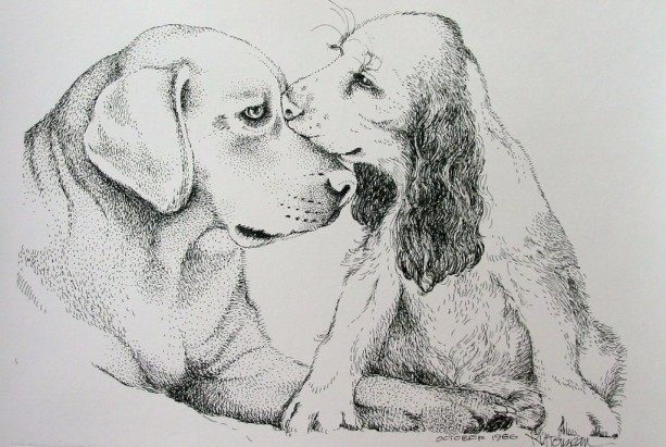 """Friends""  Pen & Ink Drawing of Dogs, Labrador & Cocker Spaniel"