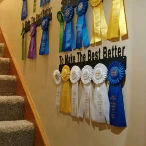 Award Display Holder, Ribbon Award Holder, Show Pen Display, Medal Display, Awards Display, Ribbon Medals Hanger, Custom Metal Signs, Farm Signs, Ranch Signs