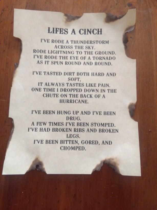 Lifes a Cinch