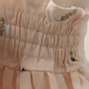 Swan Princess Dress 5T