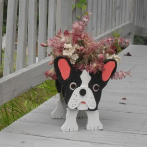 "Boston Terrier planter box, ""Brownie"""