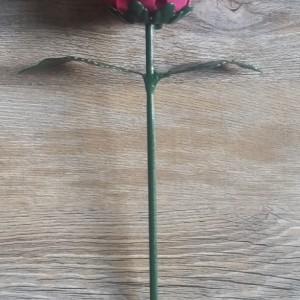 Pink Steel Rose