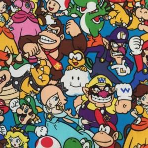 Nintendo Cotton Cozy
