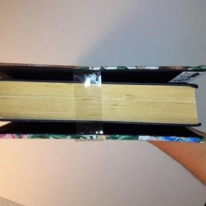 Read E-Z book cover/holder in I've Got Sunshine fabric
