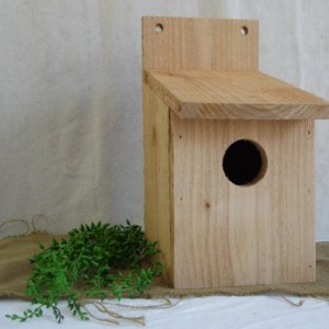 Cedar Birdhouse with Flat Roof, Birdhouse, Cedar Bluebird House, Rustic Cedar Birdhouse