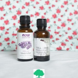 FALL SALE - Immune Boost Serum [1 oz dropper bottle]