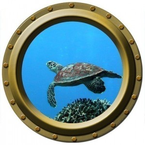 "Turtle Dancer Porthole Wall Decal - 13.75"" wide"
