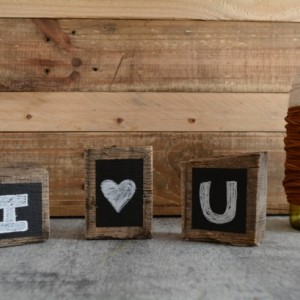 Reclaimed Mini Wood Chalkboard Blocks