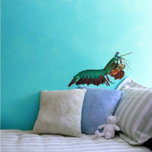 "Peacock Mantis Shrimp - Odontodactylus scyllarus - Wall Decal 20"" x 13.3"""
