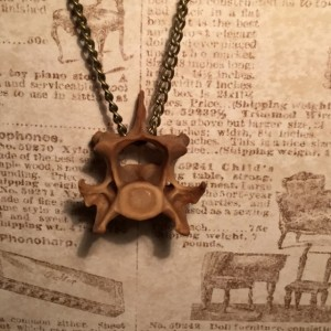 Simple Fox Vertebra Necklace