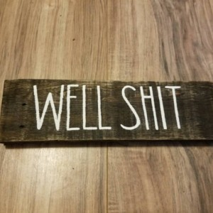 Well Shit sign, funny bathroom decor, rustic farmhouse bathroom, bathroom humor, small wood bathroom decor, poop sign, humorous bathroom