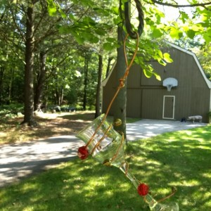 wineglass jelly bird feeders