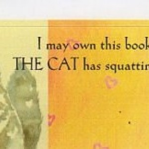 Cat Art Bookplates-Set of 5 self stick bookplates- FLUFFY GRAY PERSIAN--