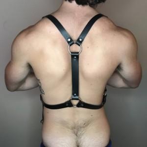 """Waist Harness 1"""""""