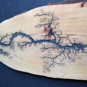 Live edge cutting board with fractal Burns