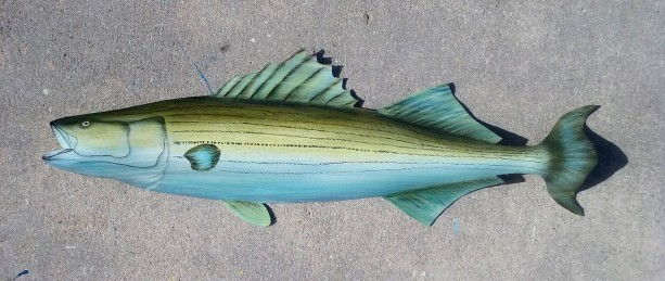 Striped Bass fish hand carved and painted from Palm tree frond art marine life painting, sea life, animals
