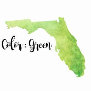 Watercolor Florida Print (Mutiple Colors) - 8x10