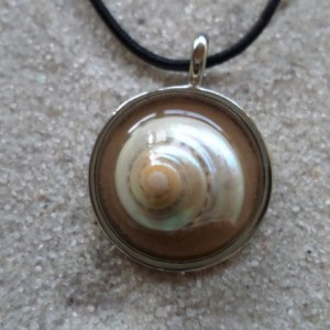 resin necklace w. sea shell