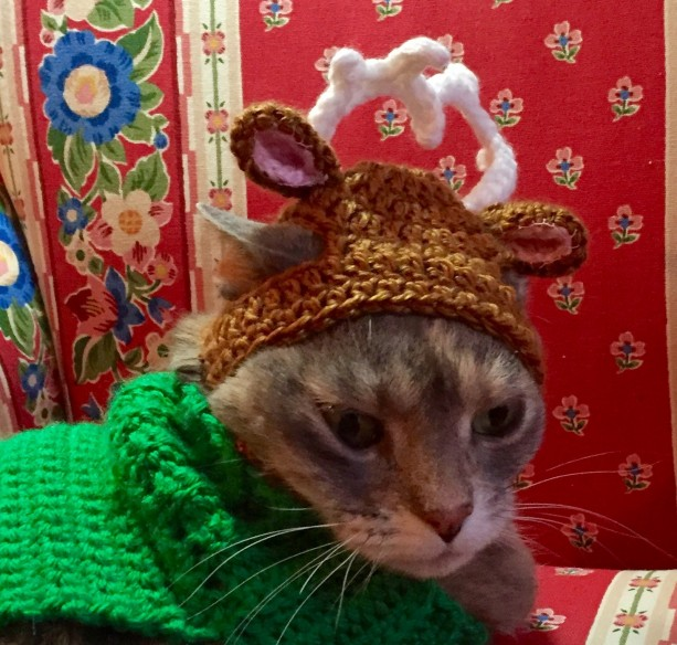 Crocheted Christmas Reindeer Hat for Cat or Small Dog